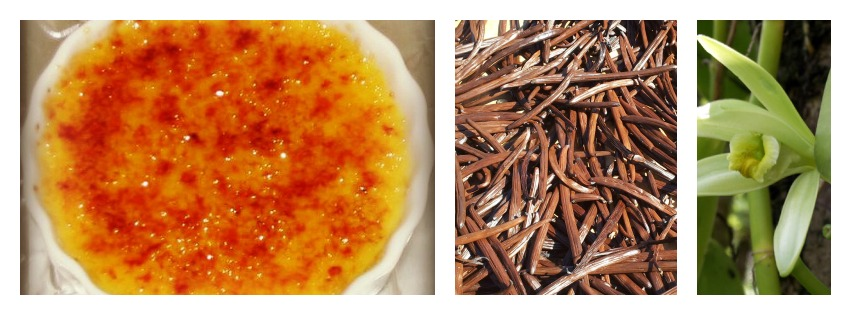 creme_brulee_collage_3